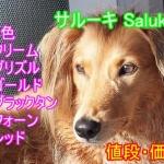 サルーキ・子犬・毛色・値段・価格