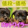ロットワイラー・子犬・値段・価格