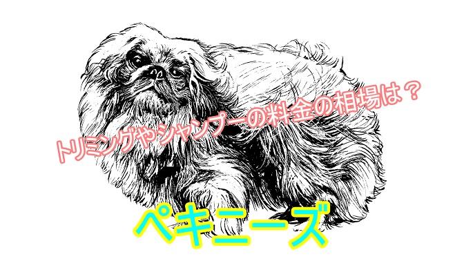 ペキニーズ-抜け毛ケア-シャンプートリミング-料金