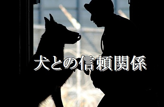 犬-信頼関係が大事
