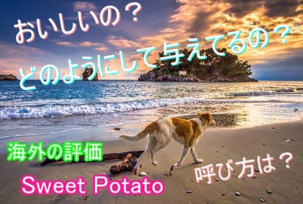 犬-さつまいも-海外-評価-口コミ