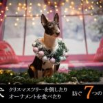 犬-クリスマスツリー-倒す-オーナメント-食べたる-対策