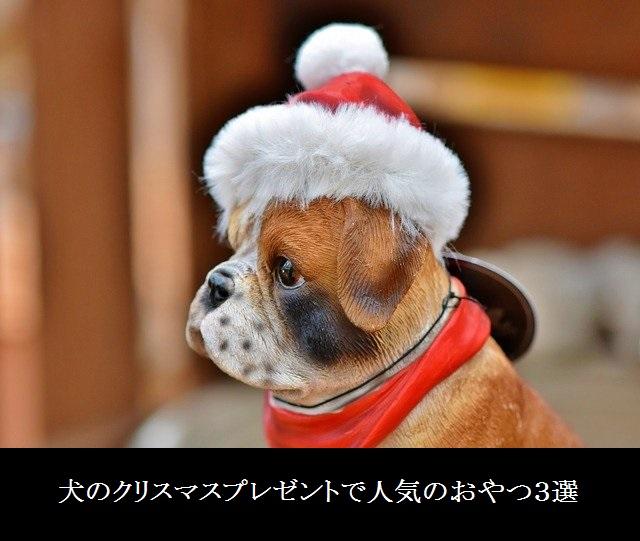 犬のクリスマスプレゼントで人気のおやつ3選